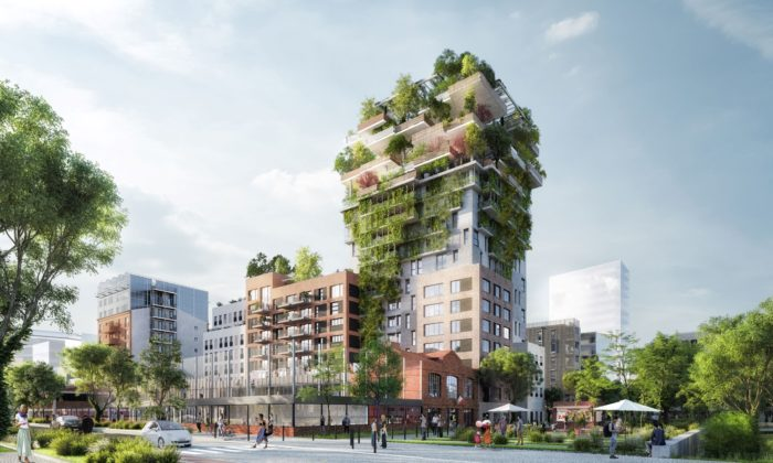 Sky & Garden - Architecte : Maison Edouard François